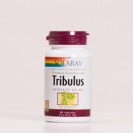 Tribulus Solary, 60Caps.